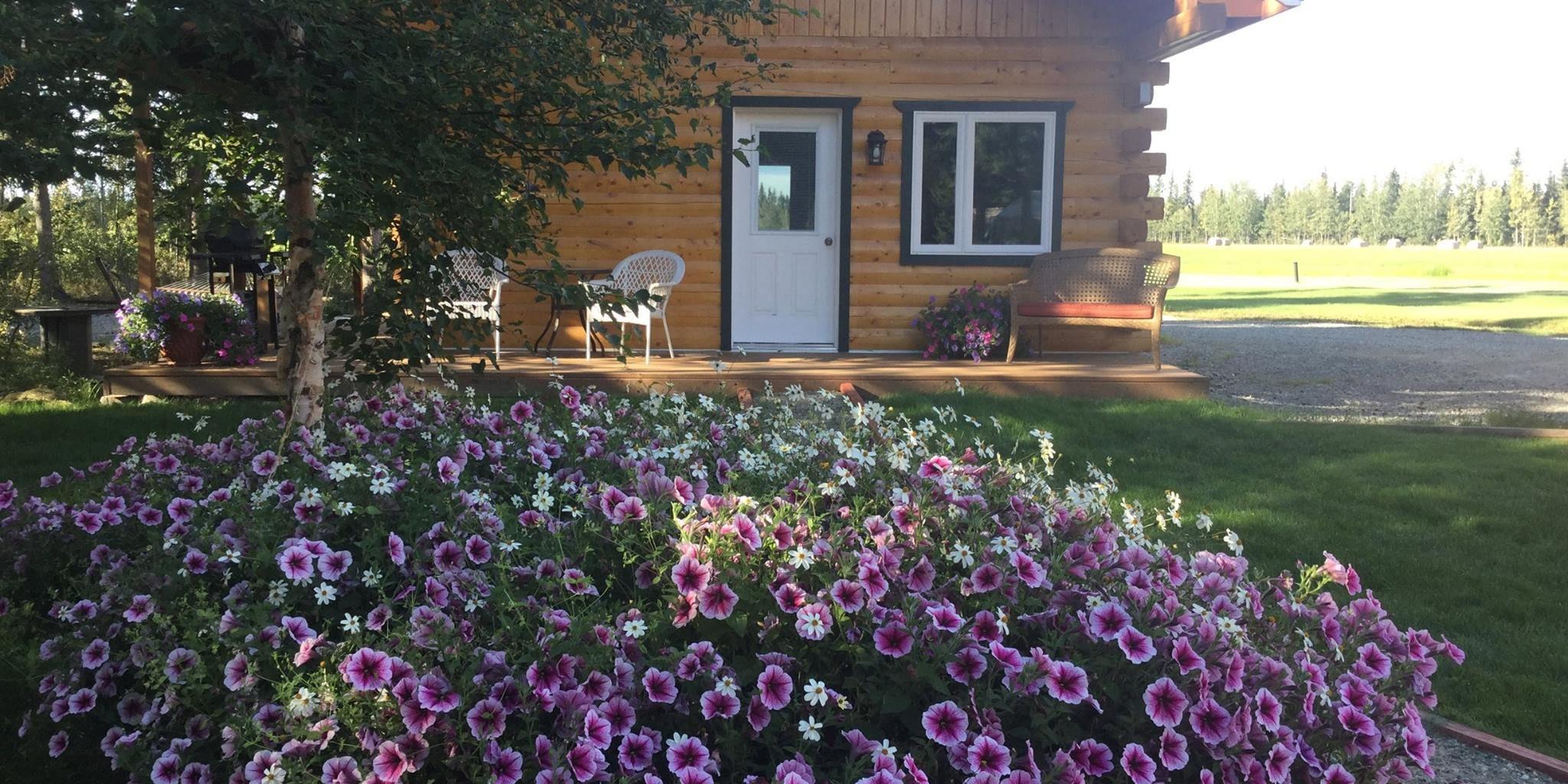 tundra rose cabin